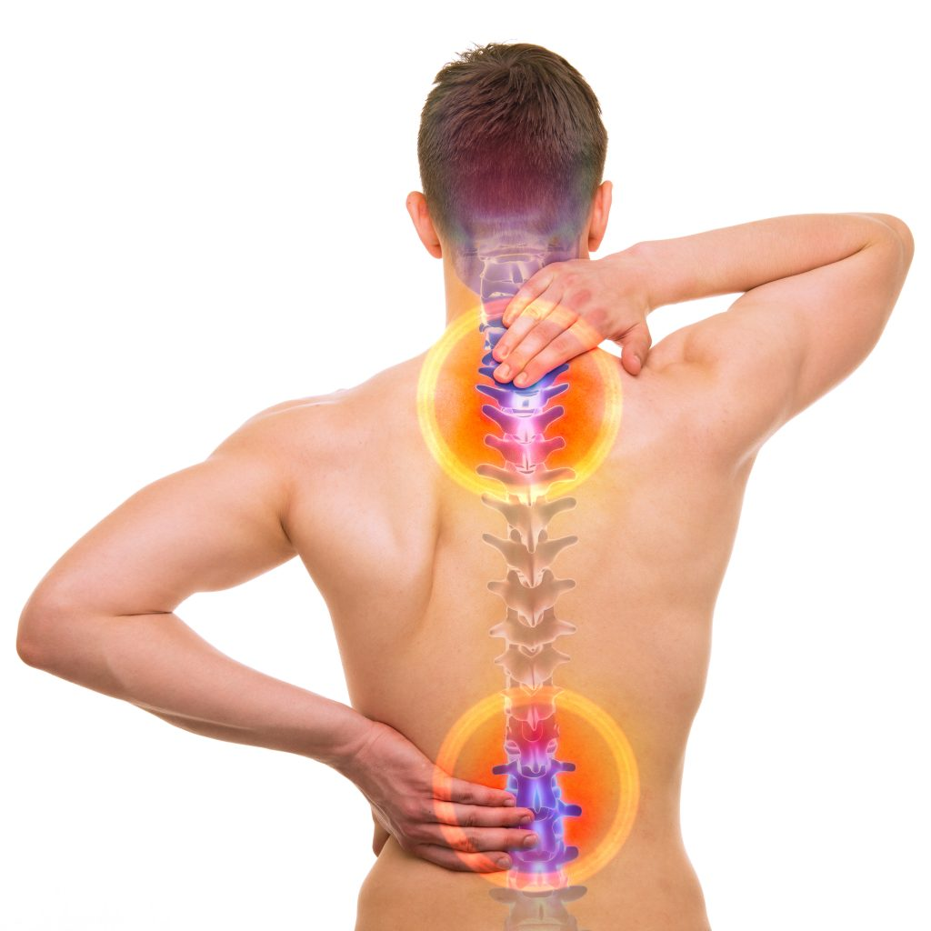 Image of the spinal system and the impact of chiropractic